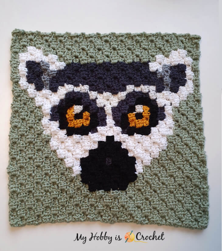 Ring Tailed Lemur C2C Square