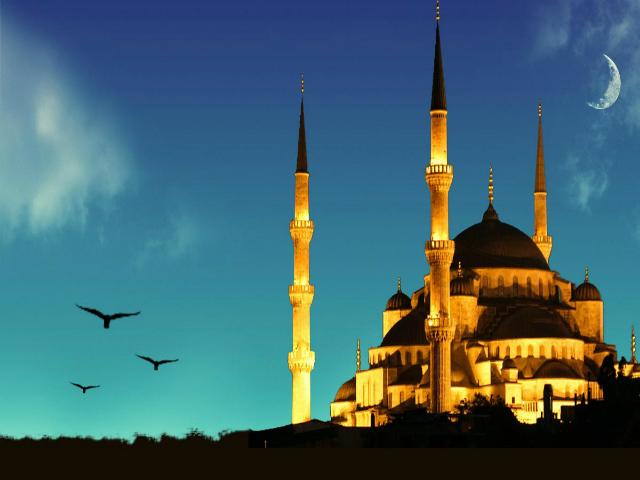 ramazan,camii,kuş,bird,gece,ramadan,night,ışıklı camii,light,mosque