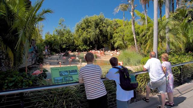 Zoológico San Diego Zoo