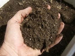Cara Membuat Pupuk Kompos Organik Dengan Praktis Cara Membuat Pupuk Kompos Organik Dengan Mudah