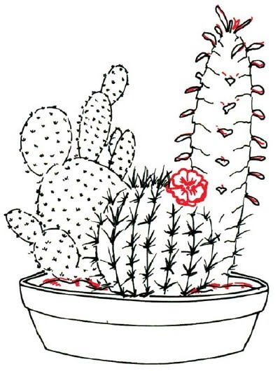 Cartoon Pictures: How to Draw a Cactus in 7 Steps
