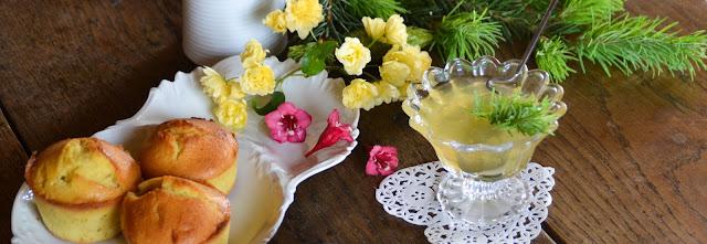 Gelée de bourgeons de sapin © Popote et Nature