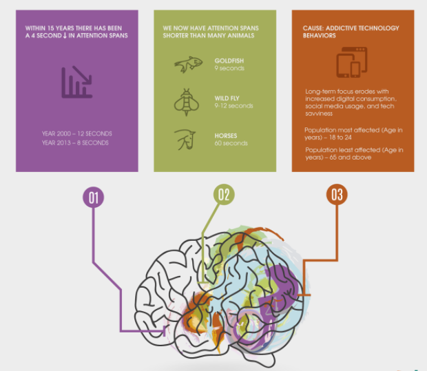Growth Of Internet Usage And Its Effect on Human Brains [Infographic]
