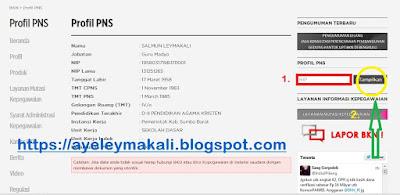 https://ayeleymakali.blogspot.com