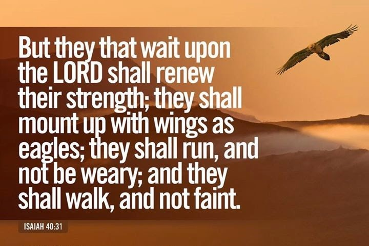 Wait On The Lord !