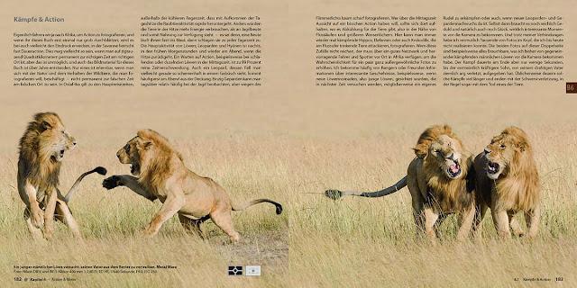 Abenteuer Safari-Fotografie, Buch, Afrika, Wildlife, Safari, Reisen, Nikon, Wildlife, Wildlife Fotografie,