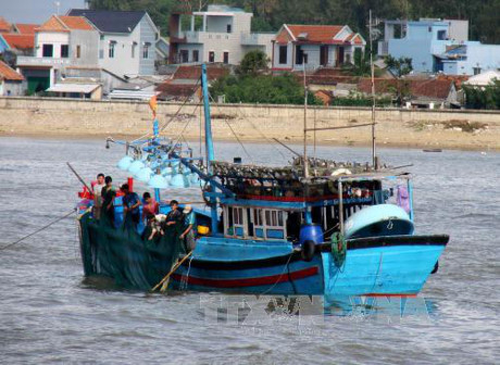 Nhiều ngư dân Quảng Ngãi liều mình ra khơi mùa biển động