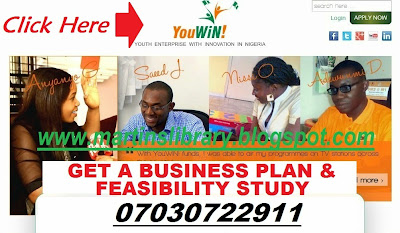 Business Plan Writing Professionals