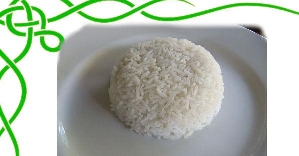 Cara Diet Sehat & Murah Dengan Diet Nasi
