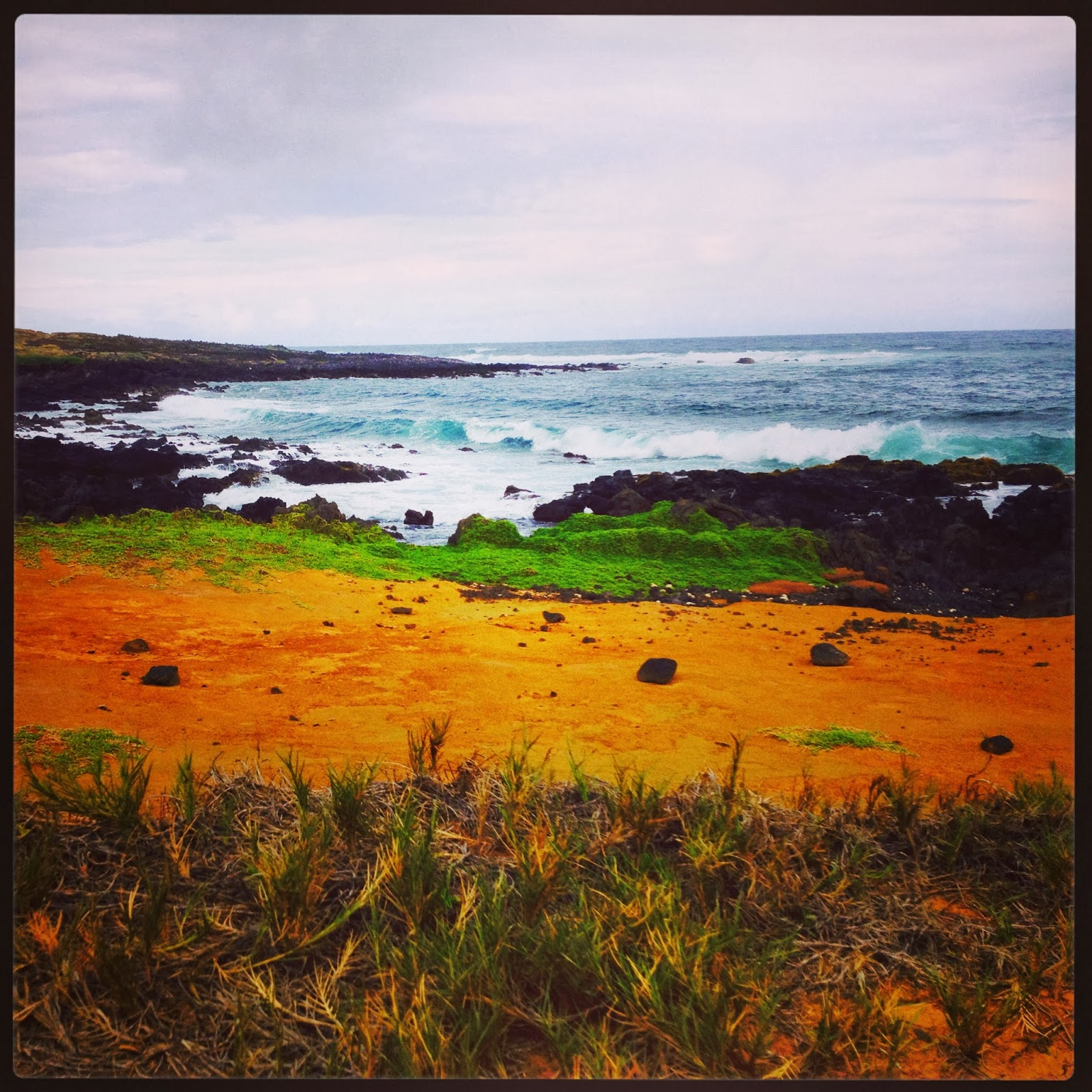 Big Island Beaches: HoneyVenturing: Big Island-Hiking The Road To Green Sands