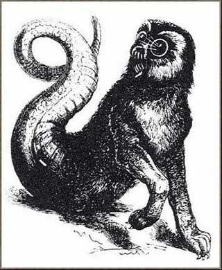 Amon, Daemon, Goetia, Ocultismo