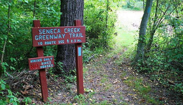 Seneca Creek Park. El Proyecto de la Bruja de Blair