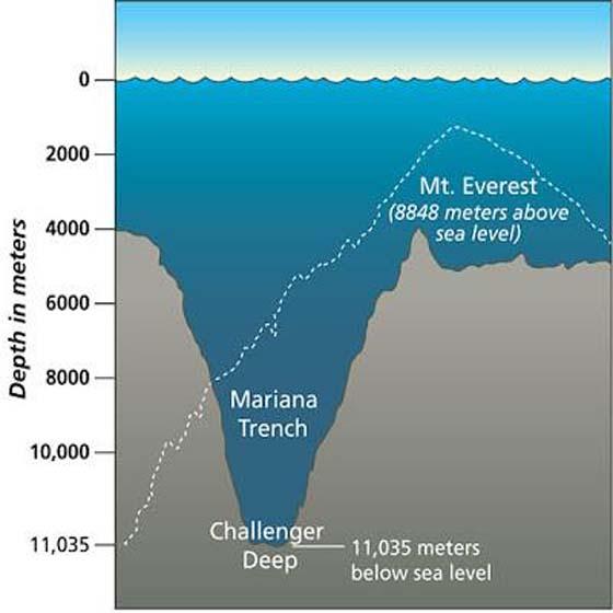 Jurang Mariana: Misteri Dan Hidupan Laut Yang Terkandung di Dalamnya