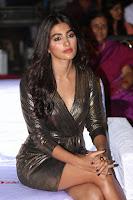 Pooja Hegde looks glamarous in deep neck sleevless short tight golden gown at Duvvada Jagannadham thank you meet function 061.JPG