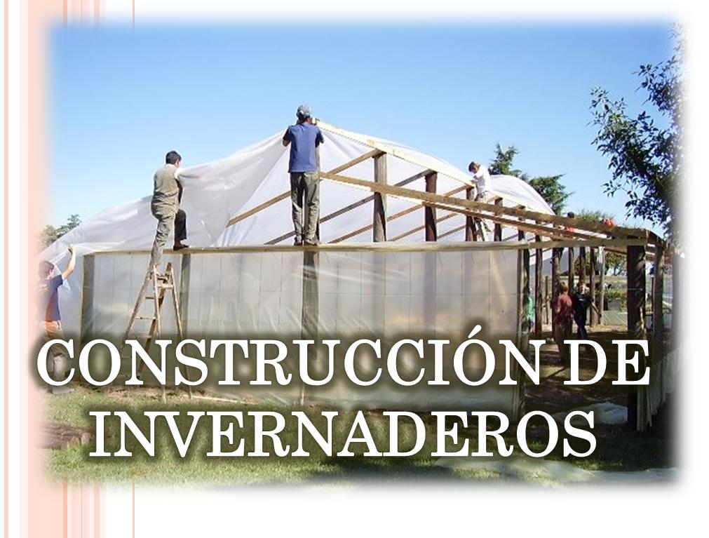 Construccion de invernaderos libros agronomicos peru for Construccion de viveros