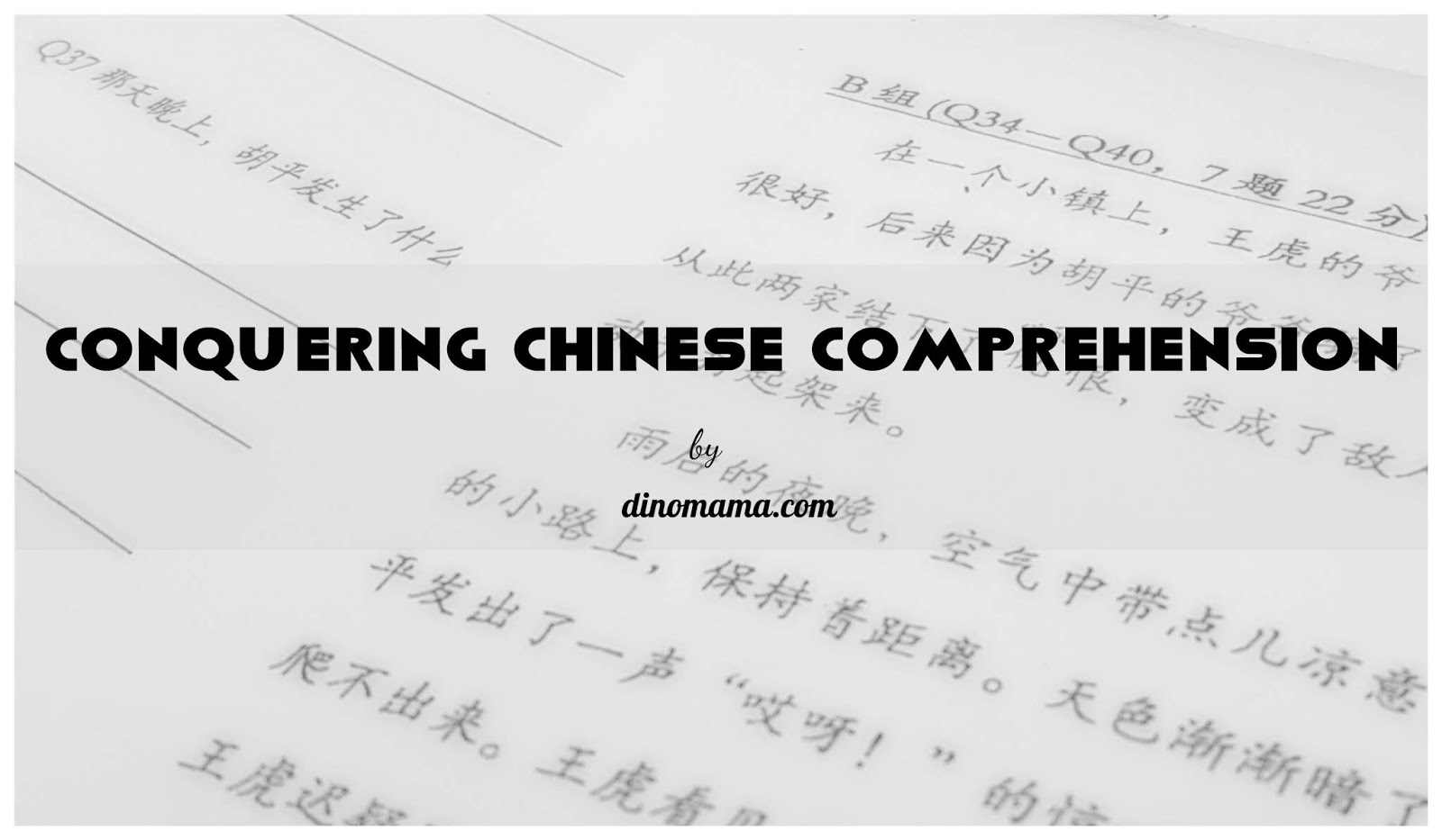 - Conquering Chinese Comprehension ~ We Are The DinoFamily 我們是