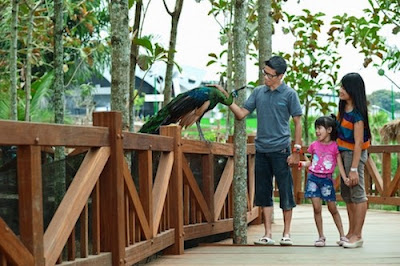 Jatim Park 2 dan Eco Green Park