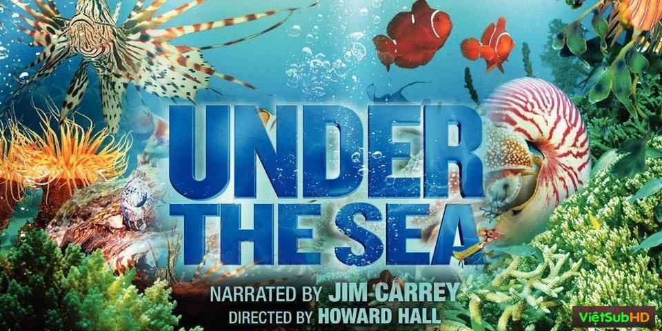 Phim Dưới Lòng Đại Dương: Đại Dương Sâu Thẳm VietSub HD | Under The Sea 2009