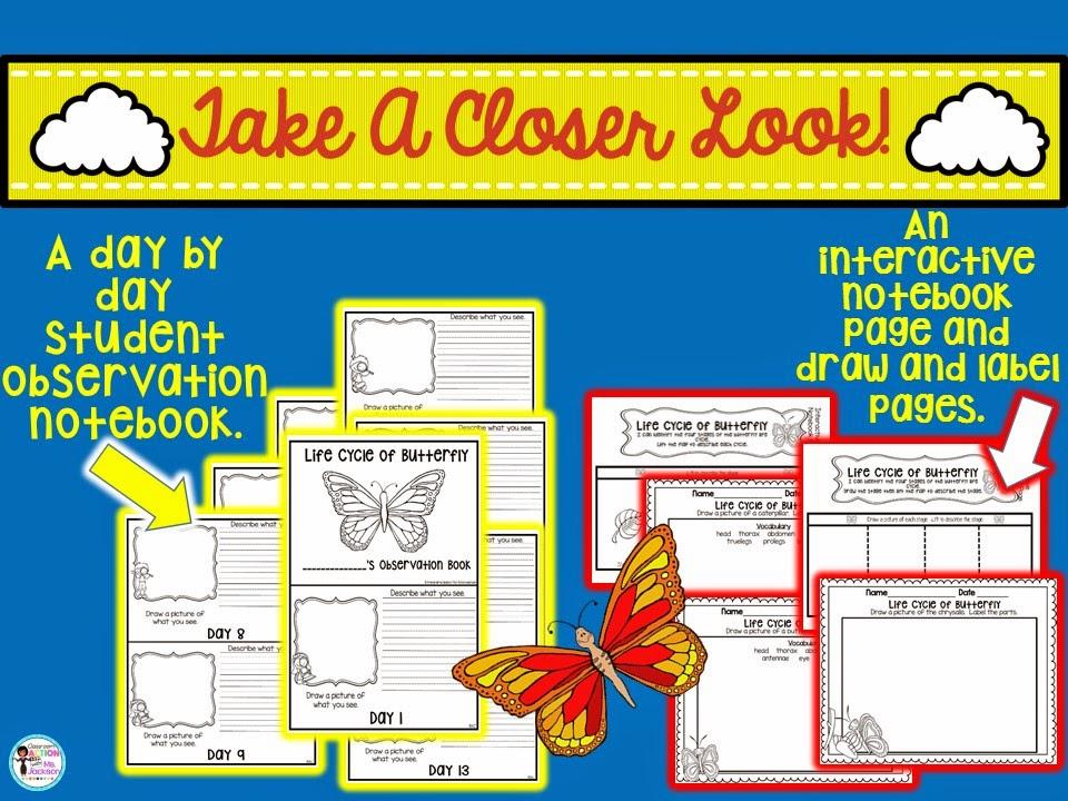 https://www.teacherspayteachers.com/Product/Butterfly-Life-Cycle-1804217