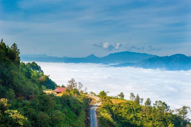 Sin Ho plateau - destination to paradise of northwest Vietnam 1