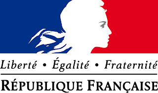 French Embassy Scholarship Programme (Humanities: SAFeThink scholarship programme) and (All other fields of study: French Embassy Master & PhD scholarship programme)