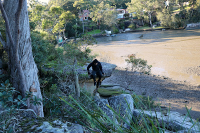 How to Geocache in Oatley Park