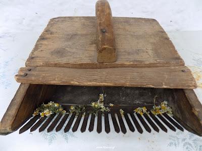 Κατασκευή εργαλείου για μάζεμα βοτάνων-χαμομηλιού