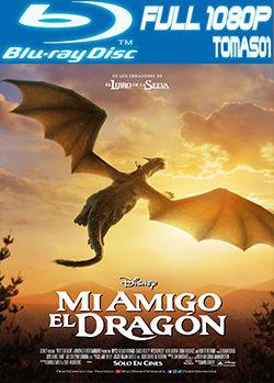 Mi amigo el dragón (2016) BRRip Full 1080p