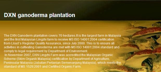 Malaysia DXN mushroom