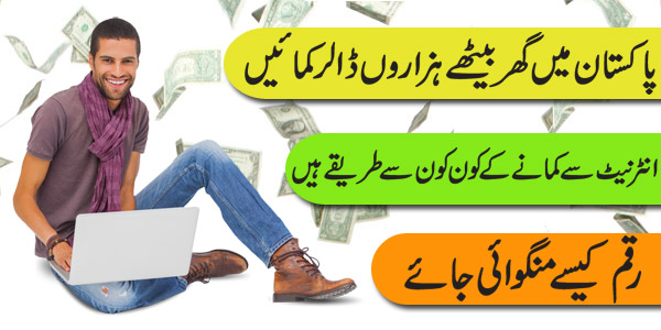 How to Earn Money in Pakistan? Urdu Book Chapter: 4