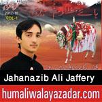 http://www.humaliwalayazadar.com/2017/09/jahanzaib-ali-jaffery-nohay-2018.html