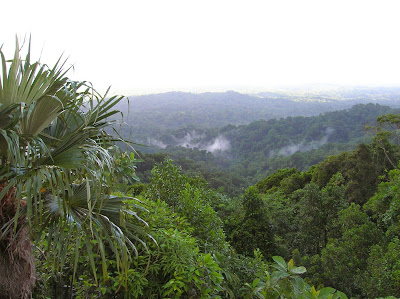 Parque natural, Panamá, round the world, La vuelta al mundo de Asun y Ricardo, mundoporlibre.com