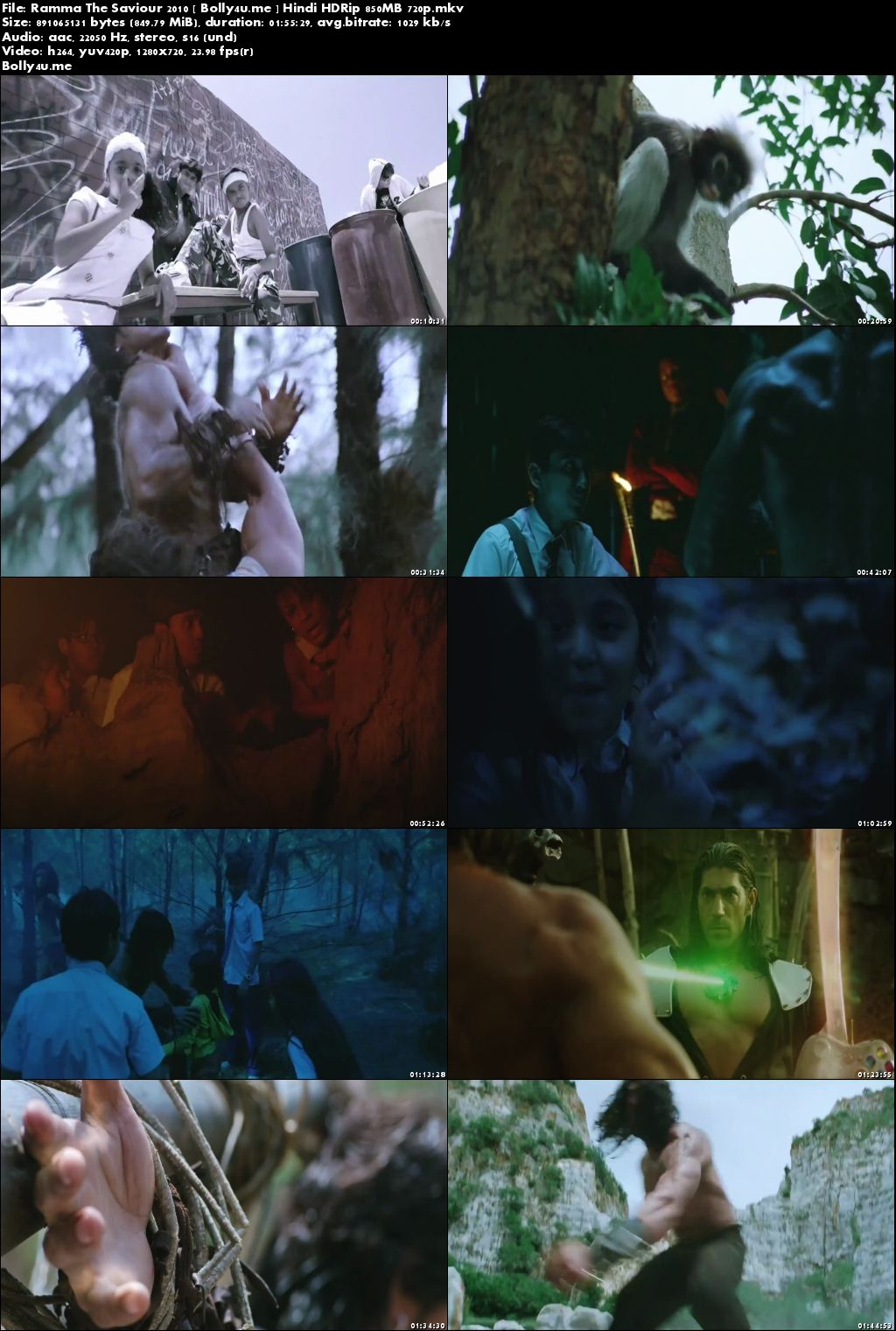 Ramma The Saviour 2010 HDRip 850MB Full Hindi Movie Download 720p