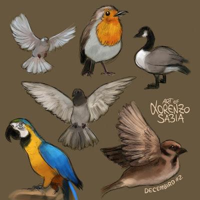 #decembird by Lorenzo Sabia