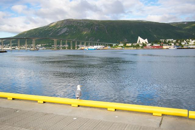 Vista sul ponte e sulla chiesa artica-Tromso