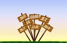 Langkah Mudah Ganti Domain Blog Menggunakan Top Level Domain (TLD)