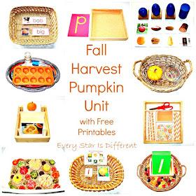 Fall Harvest Pumpkin Unit