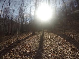 Mont St-Hilaire, sentier, l'automne