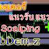 สอน Forex เบื้องต้น เทรด Forex มือใหม่ด้วยอินดิเคเตอร์บอกแนวรับ แนวต้าน ทำเป็น Scalping เก็บกำไรสั้น ๆ ก็ได้ SubDem_4z