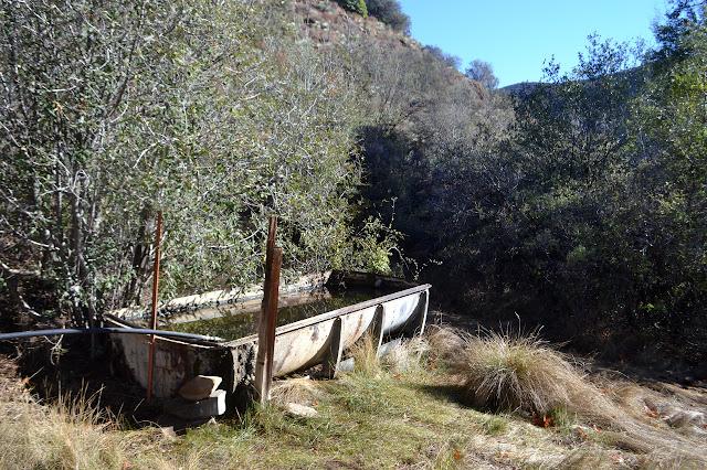full water trough