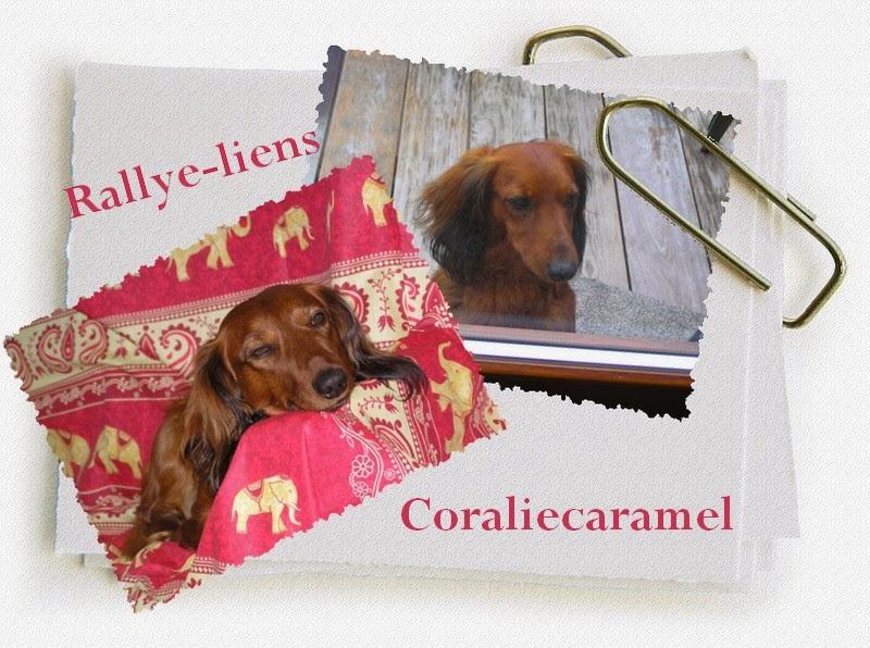 http://coraliecaramel.eklablog.com/rallye-liens-saint-nicolas-a113383454