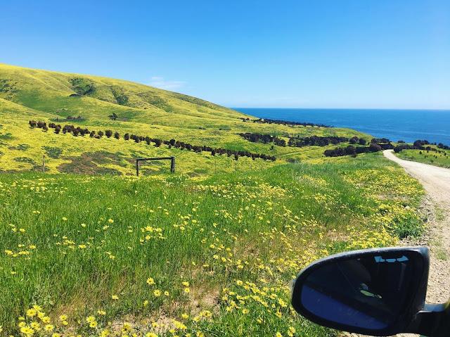 Top things to do on Kangaroo Island