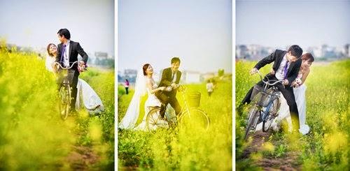 Chụp ảnh cưới ở Cánh Đồng Hoa Cải