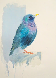 Starling in watercolour