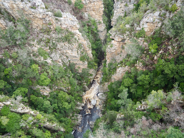 River gorge view near Tsitsikamma National Park, Garden Route, South Africa
