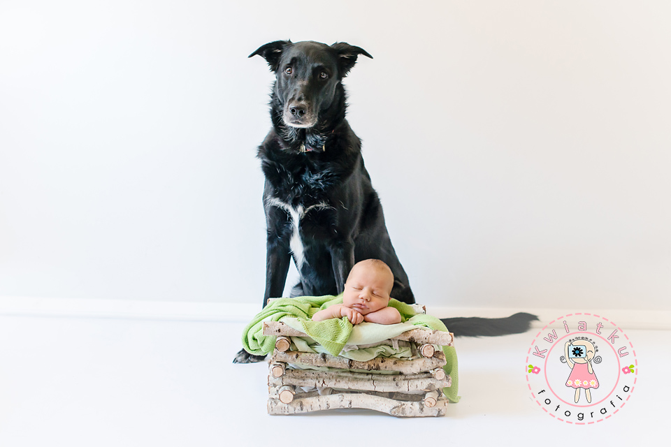 Sesja noworodkowa trojmiasto, plener noworodkowy