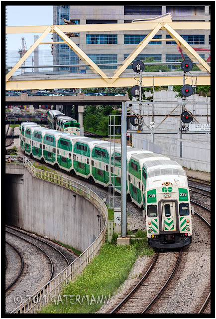 GO Transit 239 on the Union Station Rail Corridor in Toronto