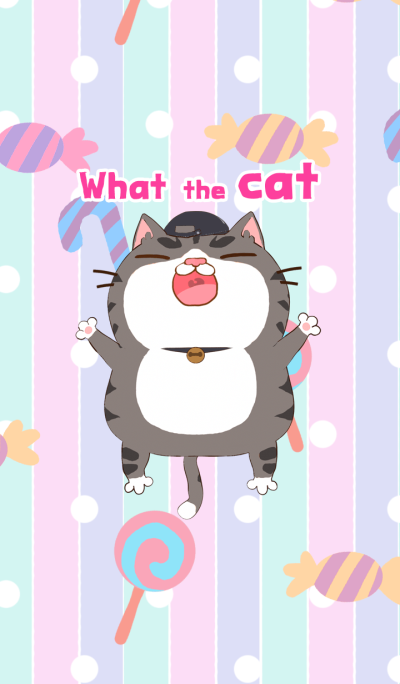 What the Cat !!!
