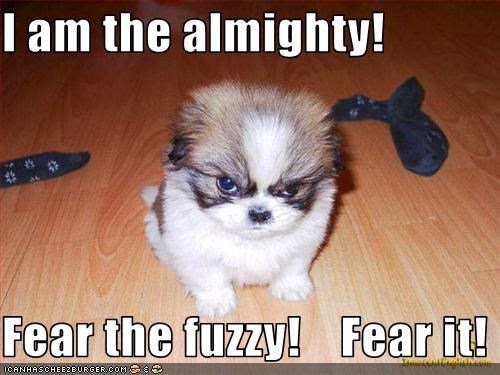 I Am The Almighty Fear The Fuzzy Candy Crush Saga