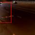 Αστυνομικός κρύφτηκε λόγω λύκων (Βίντεο)